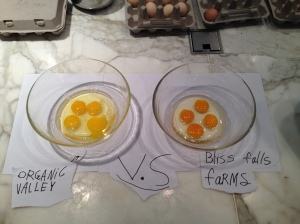 The first difference was in the color of the yolk. The Organic Valley eggs were a pale yellow (on left). Bliss Falls Farm eggs were a deep yellow / almost orange color.